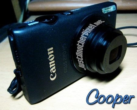 My Canon digital camera that I bought from DB Gadgets